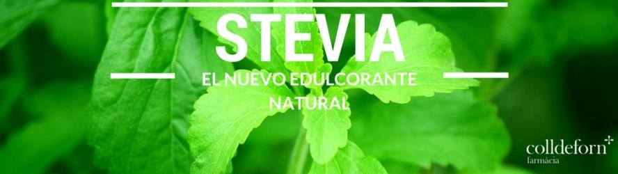 Stevia. El nuevo edulcorante natural.