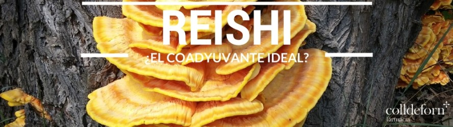 Reishi ¿El coadyuvante ideal?